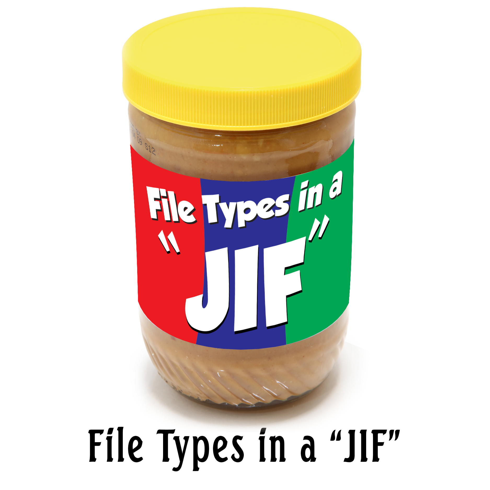 File Types in a JIF blog graphic